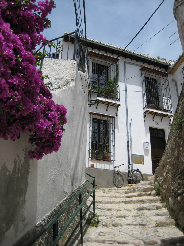 House at Realejo, Granada